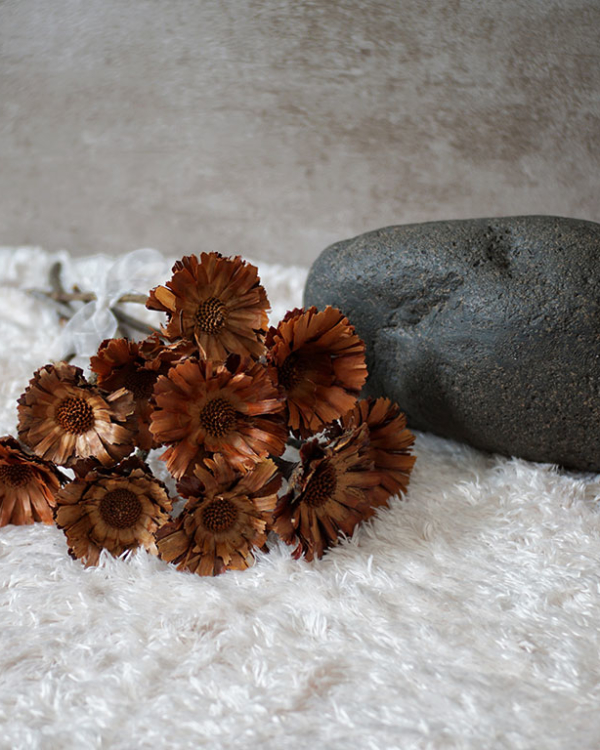 Naturally Faded Blooms(1 PC) Artificial Flowers & Potpourris